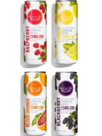 Wyld CBD-Sparkling Water Variety Pack