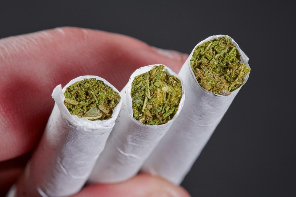 CBD cigarettes image