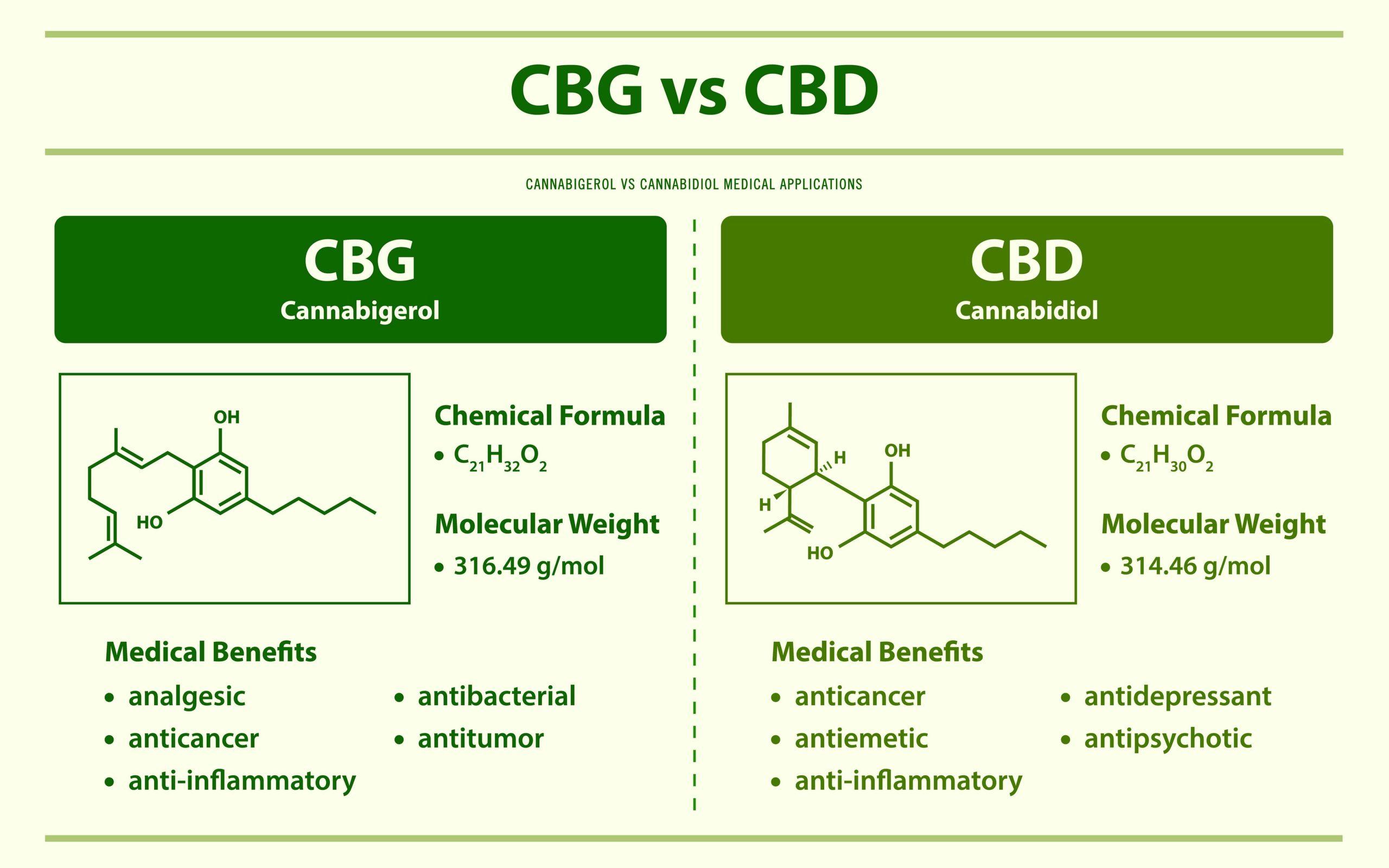 CBG vs CBD image