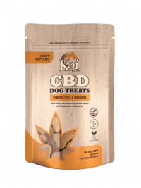 Koi-CBD-Dog-Treats-Joint-Support-pumkin Spice and Cinnamon-min